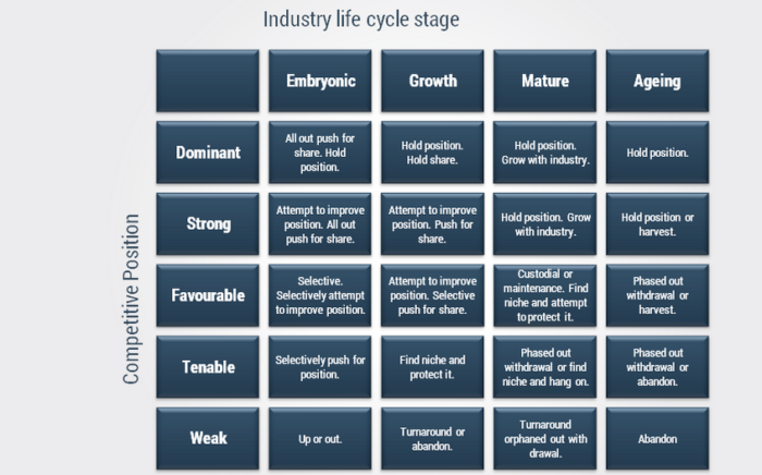 industry life cycle embryonic In the embryonic stage of the industry life cycle, barriers to entry come from access to technological know-how (a threat) rivalry is relatively low due to the fragmented nature of the industry (an opportunity) suppliers tend to be large and powerful relative to existing companies, as do buyers (threats) substitute products may be plentiful, inexpensive.